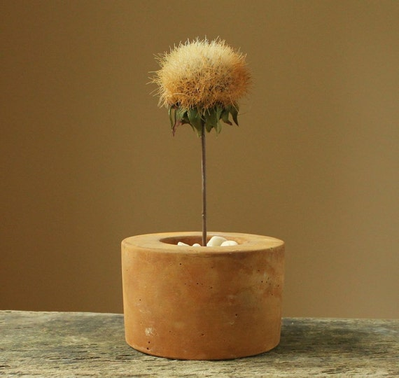 Rusty - Round Concrete Mini Pot