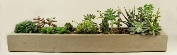 Long Concrete Tray, Concrete Planter