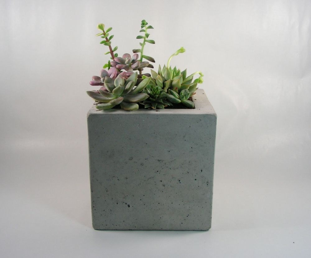 Square Concrete Planter By Roughfusion On Etsy