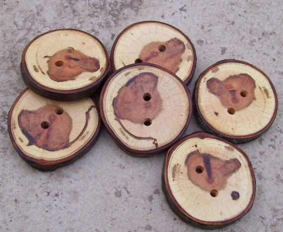 """Stunning Black Cherry Tree Branch Buttons With Bark - 2 Holes - Set Of 6 - Great For Knit, Crochet Or Craft Projects - 1 3/4""""  - 653"""