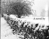 The Somebody Who, a novel