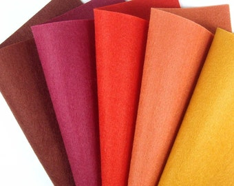 5 Colors Felt Set - Autumn - 20cm x 20cm per sheet