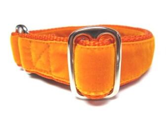 "Houndstown 1"" Citrus Velvet Tag Collar, Adjustable"