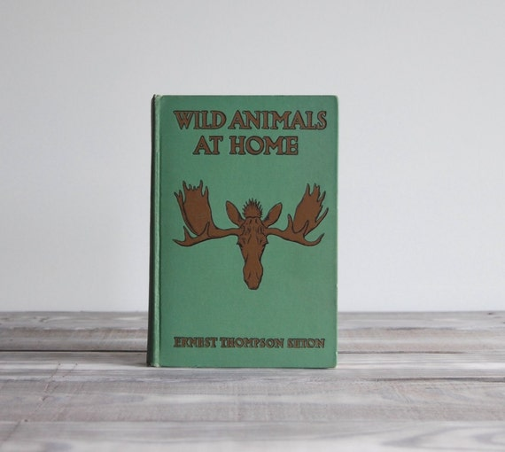 Wild Animals at Home / 1913 Wildlife Nature Guide / Antique Hardcover Book