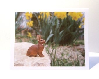 Spring Photo Note Card with Rabbit and Daffodils