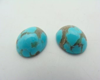 A Set of Turquoise Stones