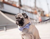 The Harbor Bow Tie Collar (S,M,L,XL)