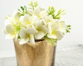 Cream Clay Hydrangeas in A Golden Vase