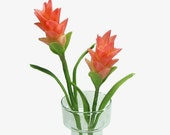 Polymer Clay Flowers Supplies Tropical Ginger Blossom for Handmade Gifts