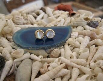 14K Gold and  White Shell Post Earrings
