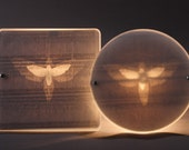 LAMPSHADE - 'Dancing Moth' design, Upcycled Perspex & Yellow Pages - Recycled Creations from Israel