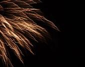 Fireworks Photography Abstract Dark Night  Fire Works Bonfire Night 8X10 Print Light Show...
