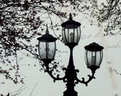 Old Lamp Silhouette Photograph Muted Tones Spring Nostalgic 10x8 Print Remember...