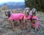 GIRLY, FEMININE DOG COAT, JACKET with BUTT RUFFLES