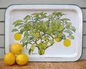 Painted Metal Lemon Tree Tray