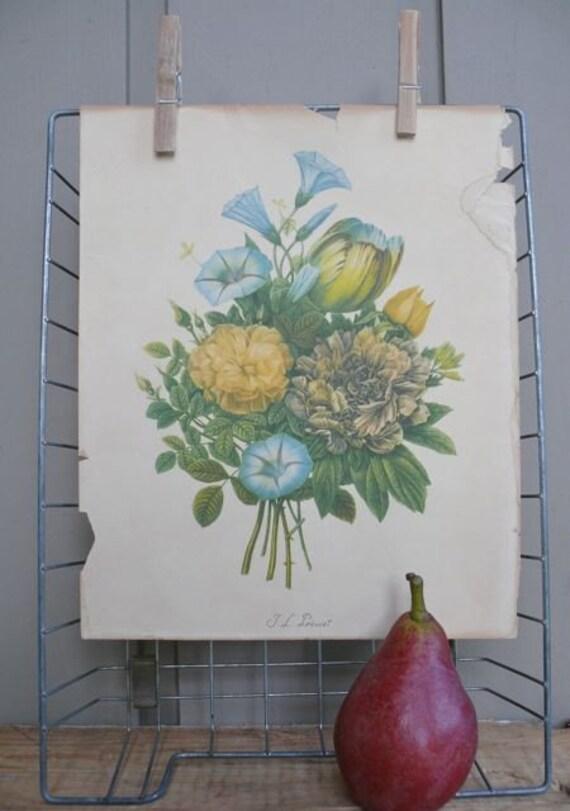 Vintage Floral Print by T.L. Prevost