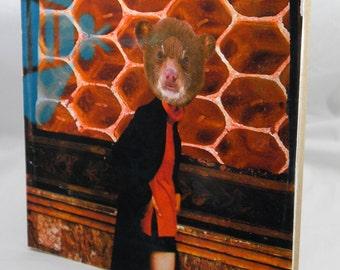 She was a honey bear