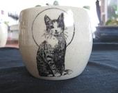 Kitty Pants Mug