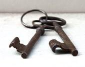 Vintage skeleton keys: Two unique French keys on a key ring