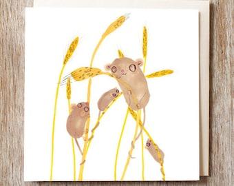 Birthday Card Yellow Harvest Mice