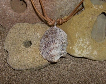 Light Forms - This unique Shell Amulet pendant features a Herkimer Diamond Crystal that has been wired onto it.