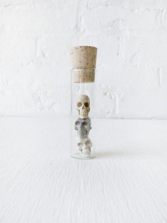 RESERVED for Mitch L - Real Deer Antler Carved Skulls in Glass cork Vial