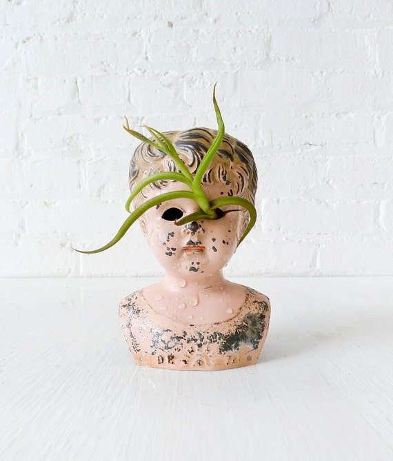 Large Antique German Rust Tin Doll with Air Plant Eye Garden