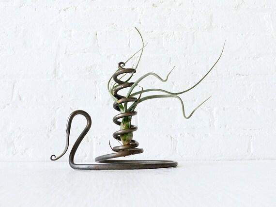Spiral Swirl Air Plant Garden - Antique Wrought Iron Candlestick