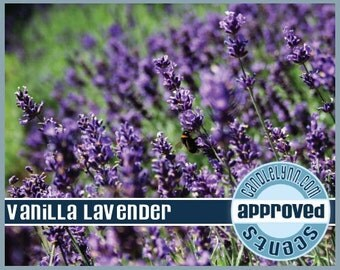 VANILLA LAVENDER Fragrance Oil, 2 oz