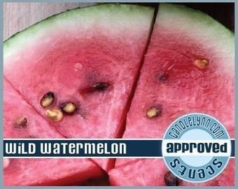 WILD WATERMELON Fragrance Oil, 1 oz.