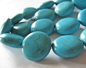10 20x8mm Turquoise Coin Beads B598