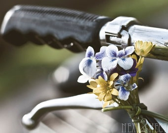 Bicycles And Bouquets 5x7 Inch Photographic Print