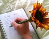 HALF OFF SALE Fairy Pen