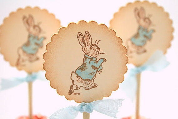 Peter Rabbit Cupcake Toppers / Food Picks Baby Shower Birthday Set of 10