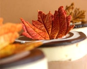 Edible Petite Sugar Fall Leaves  2 dozen