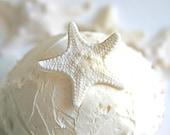 Edible Mini Armored Starfish -Cake Topper, Cake Embellishment, Edible Decor (24)