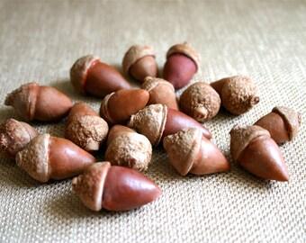 Edible Chocolate Candy Winter Acorns 16 as seen in Martha Stewart Weddings Spring 2013