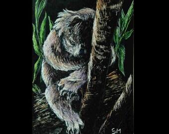 ACEO, Scratch Board Art,  Koala Bear Sleepy Time