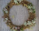 LOCAL DELIVERY ORDER for Katie47Lou - 4 Handmade Succulent Wreaths and 1 Small Succulent Arrangement in Antique Brass