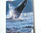 Vintage Whale Whales Book Jacques Cousteau Yves Paccalet 1st Edition Hard Cover