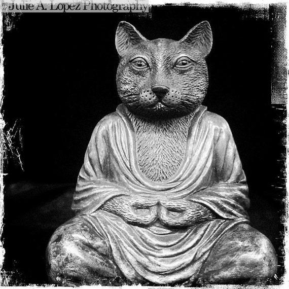 Mini Art Print - Cat Buddha - 5x5 Photograph
