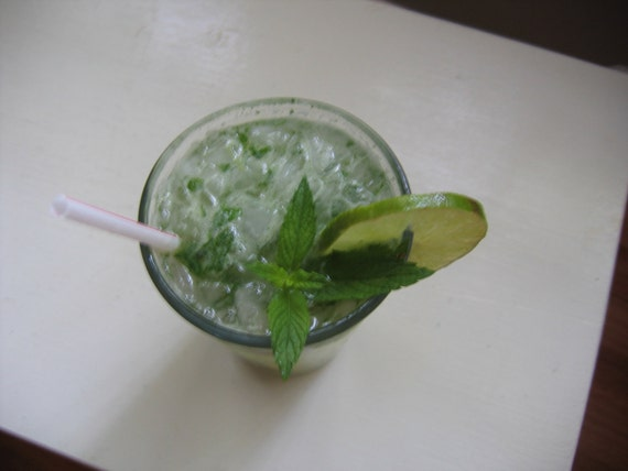 Pay It Forwad Magnificent Mojito Cocktail Recipe PIF