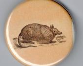 Armadillo Vintage Image 1.25 Button/Pin/Badge