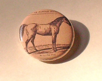 Horse 1 inch pinback Button Vintage Image