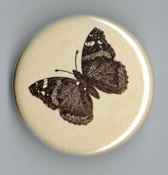 Red Admiral Butterfly Life Cycle Vintage Image 1.25 Inch