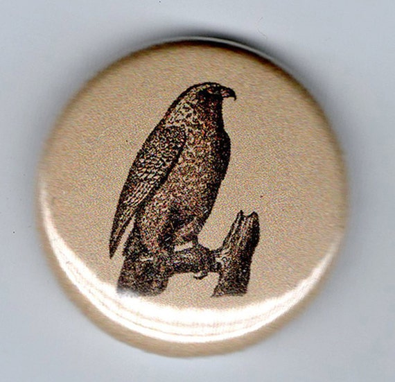 Gyr Falcon and Talons Vintage Image 1 inch BUTTON duet