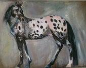Original Appaloosa painting