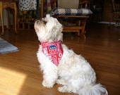 Dog collar scarf listing for small available in seven republican sizes