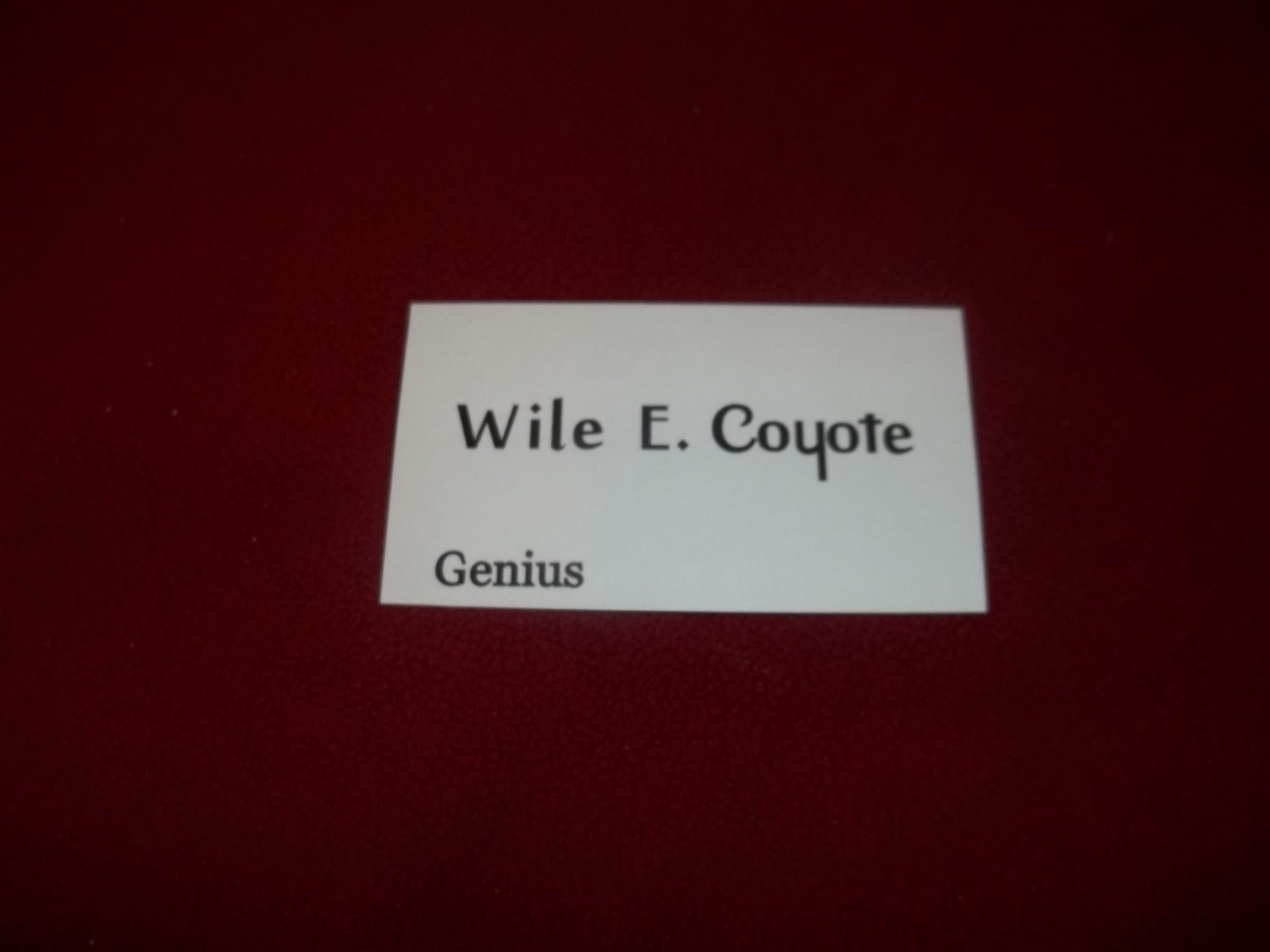 Wile E Coyote Business Card prop real business card