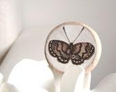 butterfly - original miniature wall art